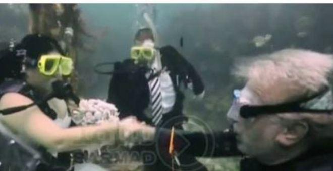 بالفيديو.. زواج في أعماق المحيط والشهود من الأسماك