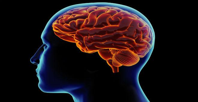 بكتيريا نادرة تأكل الخلايا الدماغية