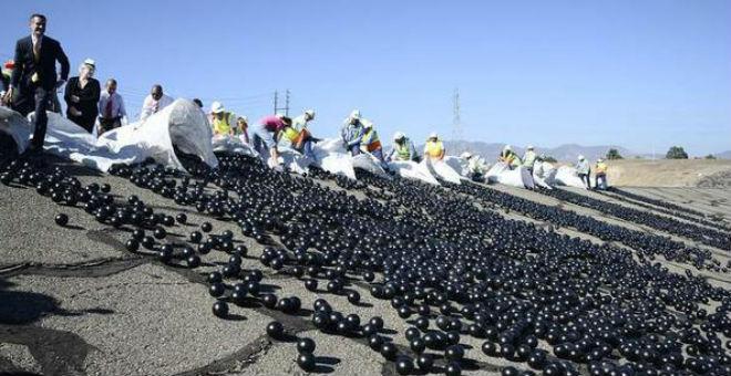 كرات الظل لمحاربة الجفاف بلوس أنجلوس