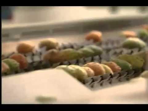أول وحدة صناعية لتلفيف وانتاج فاكهة الصبار في المغرب