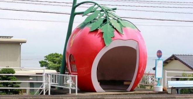 بالصور.. محطات الحافلات بطعم الفواكه