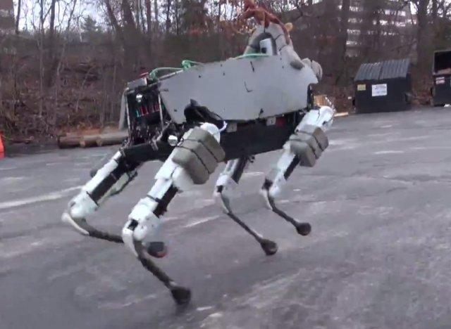 a-SPOT-ROBOT-640x468