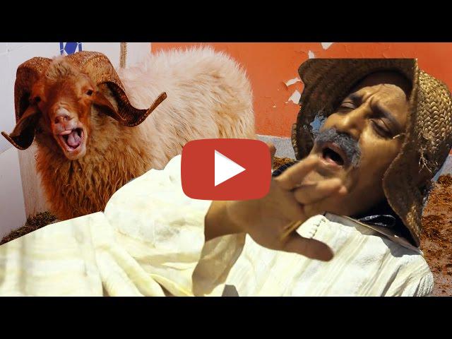 بالفيديو : كبور و العيد الكبير