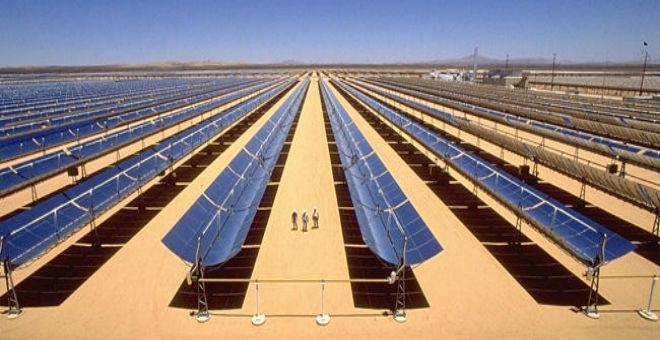49 شركة تضع عينها على مشروع ''نور تافيلالت'' للطاقة الشمسية