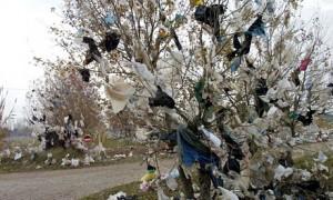 الأكياس البلاستيكية