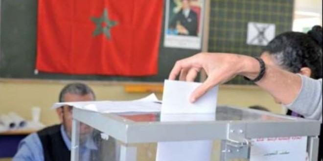 الانتخابات ت
