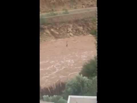 شاهد كيف نجا شاب من الغرق بواد اورير