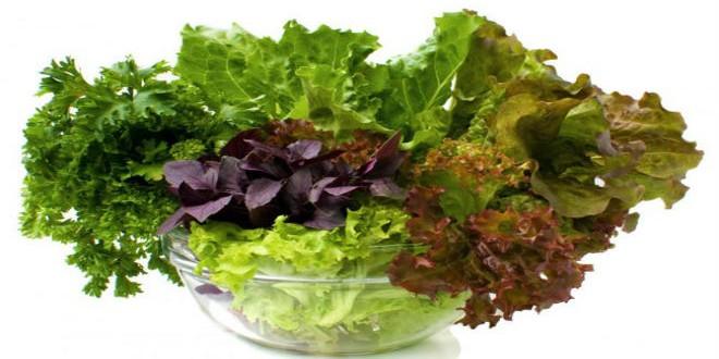 الخضراوات الورقية