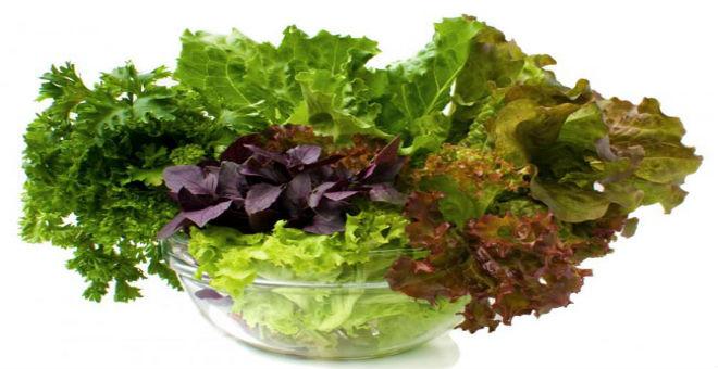 7 أسباب تجعلك تأكل الخضراوات الورقية يوميا