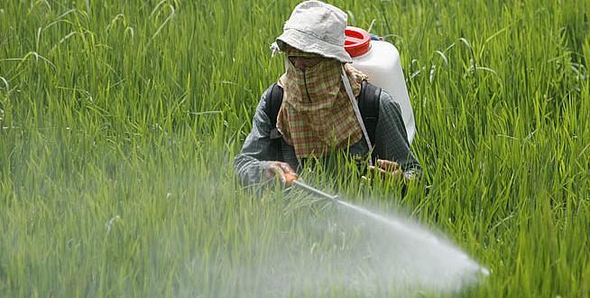 رش-المبيدات