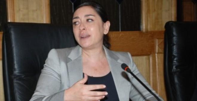 بادو: التصويت  في البرلمان الأوروبي ضد التعديلات المعادية للمغرب انتصار للوحدة الترابية