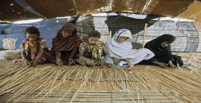 الحكومة الموريتانية تطلق حملة لمكافحة عمل الأطفال جنوب البلاد