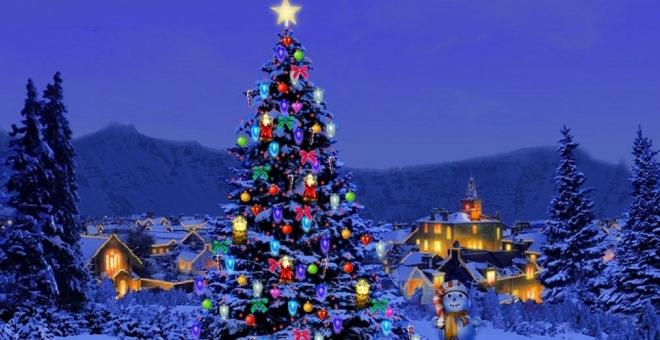 شجرة عيد الميلاد تغزو العالم.. ولكن ما أصلها؟
