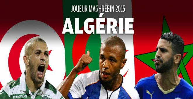 ثلاثي جزائري يتنافس على جائزة أفضل لاعب مغاربي