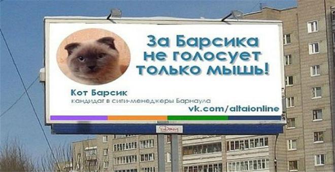 مدينة روسية ترشح قطا لمنصب العمدة