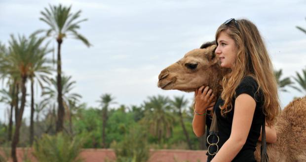 المغرب الوجهة السياحية المفضلة للبلجيكيين لقضاء عطلة نهاية السنة