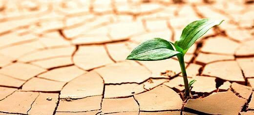 ''قمة مراكش'' للمناخ..أولى الاستعدادات لتنظيم أهم حدث بيئي بالمغرب