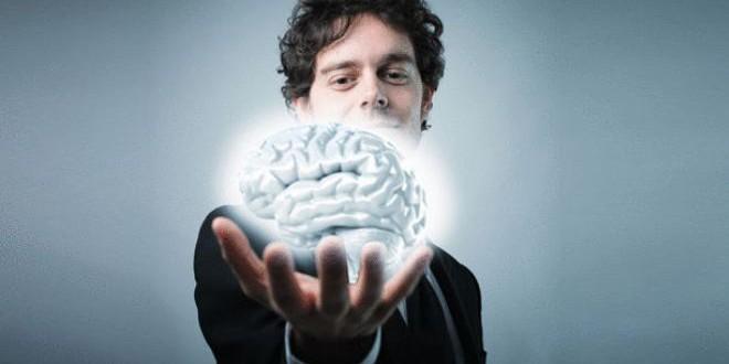 صورة من الأرشيف للدماغ البشري