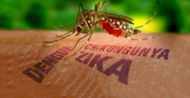 كيف تحمي نفسك من الإصابة بفيروس زيكا الوبائي؟