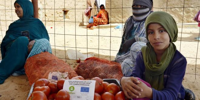 مساعدات انسانية للصحراء