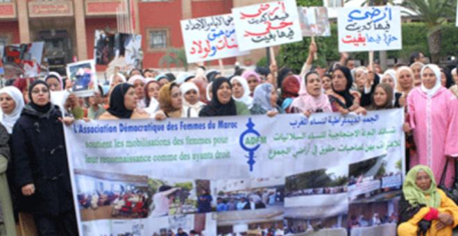 الأراضي السلالية بالمغرب..ثروة اقتصادية وعقارية  تواجهها تعقيدات إدارية