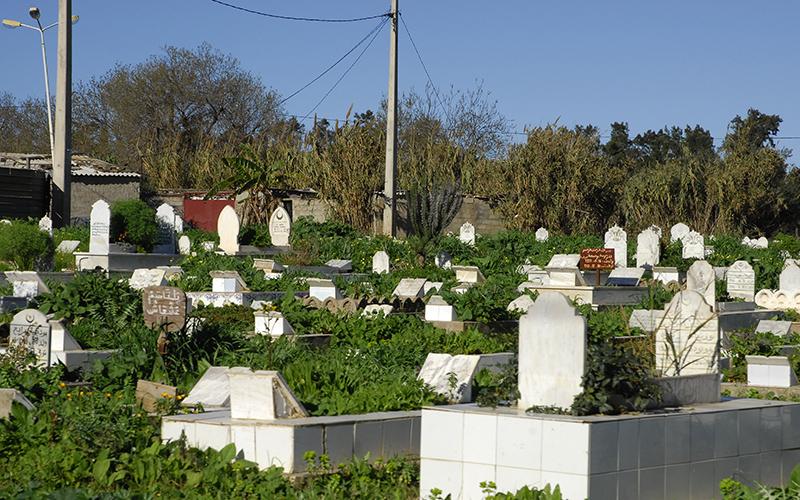 بالفيديو. العثور على ميت خارج قبره بسطات!