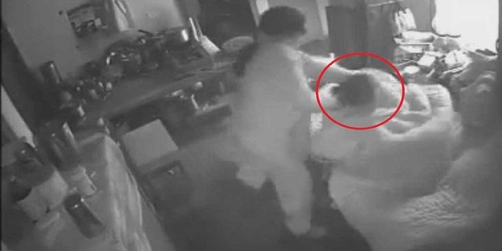 فيديو: الكاميرا تفضح سيدة تحاول قتل حماتها