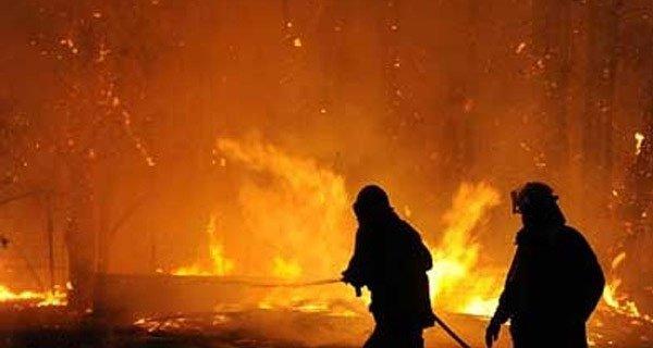 بالفيديو. بعد إعدام النمر.. احتجاجات عارمة وإحراق القنصلية السعودية
