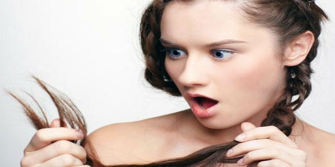 foods-to-prevent-premature-greying-of-hair