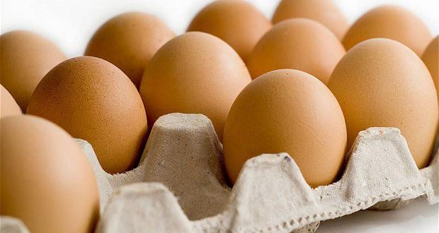 البيض-1