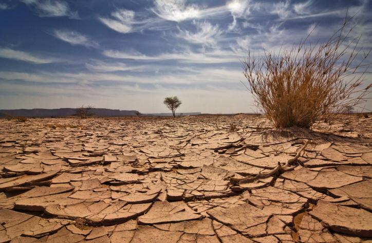 رباح: المغرب ملتزم منذ سنوات برفع تحديات البيئة والتغيرات المناخية