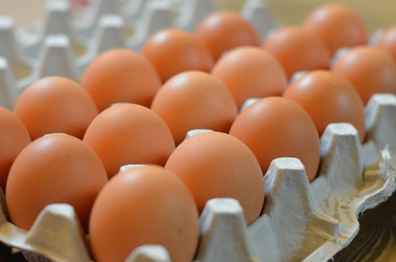 أنفلونزا الطيور تتسبب في زيادات صاروخية في أسعار البيض