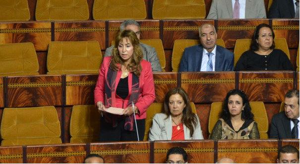 لائحتا ''الشباب والنساء'' في البرلمان المغربي تثيران المزيد من الجدل
