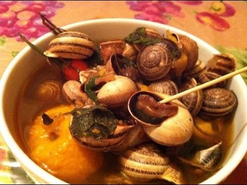 نبيل العياشي: الفوائد الصحية لتناول الحلزون