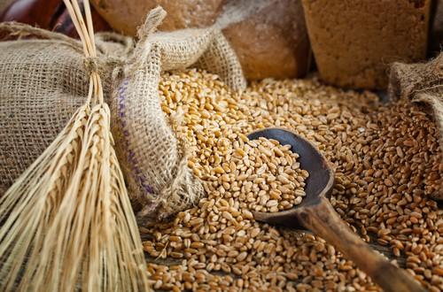 Barley-hair-care-