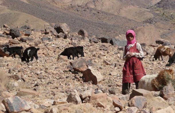 رصد 269 مليون درهم لفك العزلة عن قرى شمال المغرب