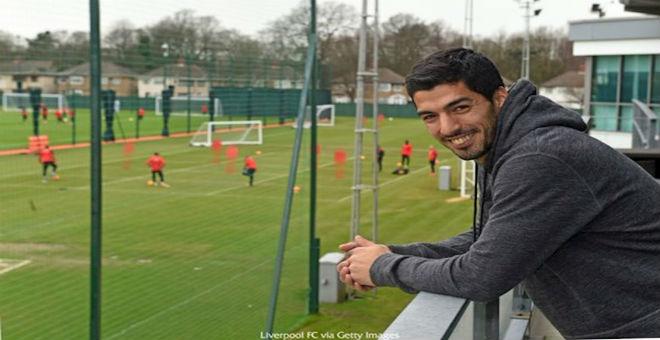 لويس سواريز يعود لنادي ليفربول !