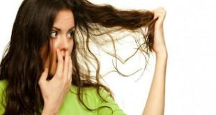 الشعر الدهني