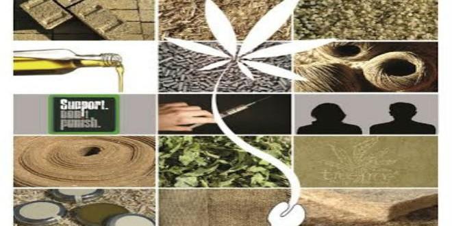 ندوة دوليةحول المخدرات