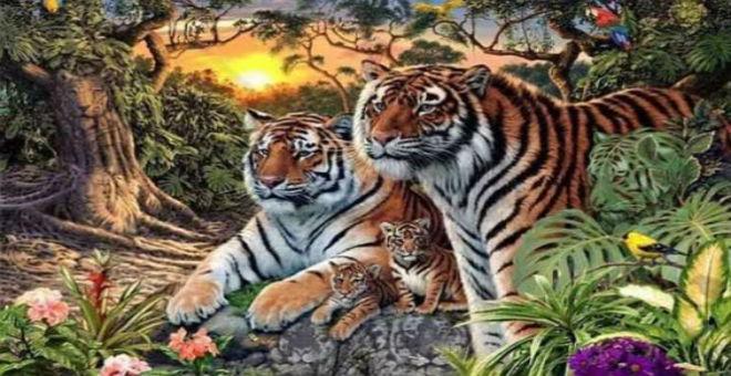 هل تستطيع العثور على 16 نمراً في هذه اللوحة؟