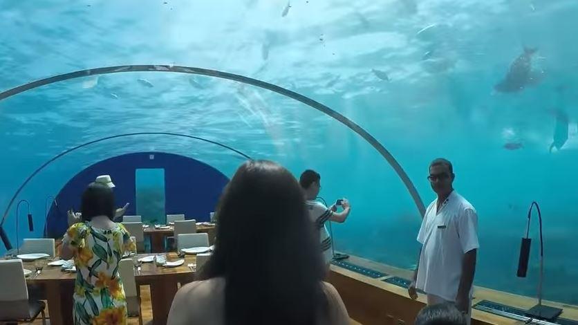 بالفيديو : 10 مطاعم غريبة لن تصدّق أنها موجودة حقاً..!!