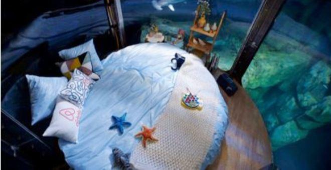 بالصور.. غرفة للنوم وسط أسماك القرش