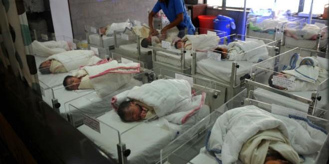 مزرعة للأطفال الرضع