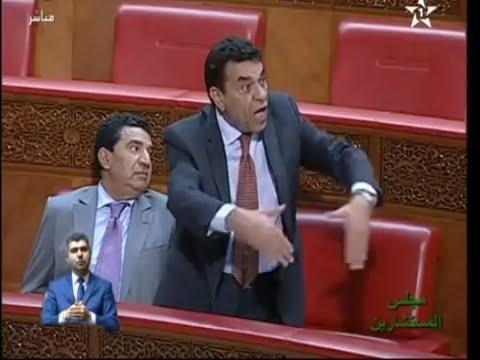 محمد الوفا