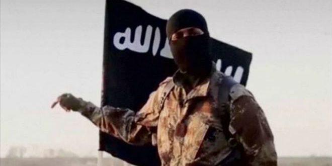 "موالين لتنظيم ""داعش"""