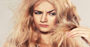 الشعر الهايش