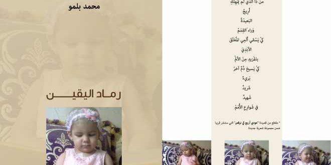 الشاعر محمد بلمو
