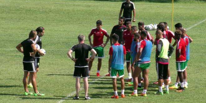 الفريق الوطني