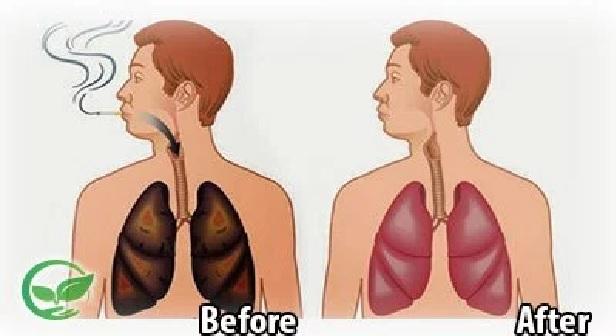 4 مأكولات مدهشة.. لتنظيف رئتيك من أثار التدخين بسهولة !