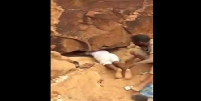 زحفوا تحت الصخور ليخرجوا معهم ما لم يكن متوقع!